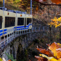 treno-del-foliage_2