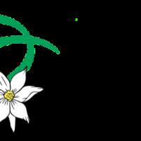 logo auser lentiai